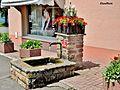 Fontaine fleurie, à Etueffont.jpg