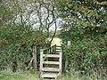 Footbridge over Nethercote Brook - geograph.org.uk - 1545231.jpg