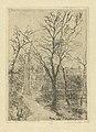 Footpath at Groenendael, print by James Ensor, 1888, Prints Department, Royal Library of Belgium, S. II 53358.jpg