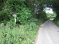 Footpath on High Woods Lane - geograph.org.uk - 1409287.jpg