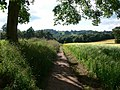 Footpath to Low Habberley - geograph.org.uk - 495861.jpg