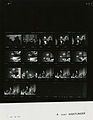 Ford A3937 NLGRF photo contact sheet (1975-04-04)(Gerald Ford Library).jpg