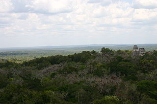 Petén-Veracruz moist forests
