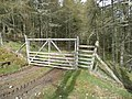 Forestry gate - geograph.org.uk - 776527.jpg