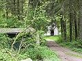 Foret de Bonneval, Vosges, France - panoramio (18).jpg