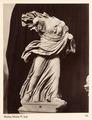 Fotografi. Niobe. M. Vat. Rom, Italien - Hallwylska museet - 104740.tif