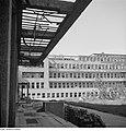 Fotothek df ps 0000396 Kriege ^ Kriegsfolgen ^ Zerstörungen - Trümmer - Ruinen.jpg