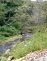 Fountain-Springs-Park Delaware-County,-Iowa Sunday,-September-4,-2011 tour-04.jpg