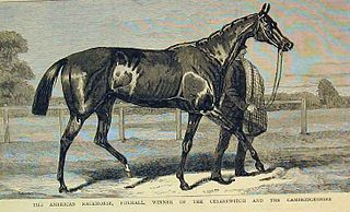 Foxhall (horse) American-bred Thoroughbred racehorse