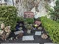 Friedhof friedenau 2018-03-24 (12).jpg