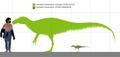 Fukuiraptor scale diagram.png