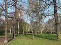 Güntz-Park.jpg