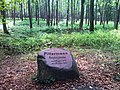 Głaz -Pittermann inspektor leśny od 8 siepnia 1855 do 1 października 1895 - panoramio.jpg