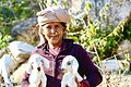 Garwali shepherd.jpg