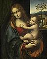Giampietrino - Maria met kind.jpg