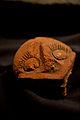 Gjetje Arkeologjike ne Kosove.jpg