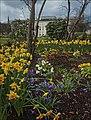 Glasgow Flowers (27721612515).jpg