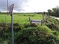 Glenmaquin Townland - geograph.org.uk - 999531.jpg