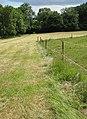 Gloucestershire Way footpath - geograph.org.uk - 845499.jpg
