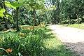 Godawari Botanical Garden 11213.jpg