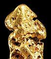 Gold-cat08d.jpg