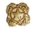 Gold Star Lapel Button.png