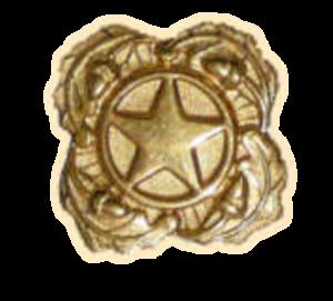 Gold Star Lapel Button - Next of Kin Lapel Button