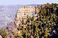Grand Canyon North Rim02.jpg