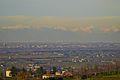 Grattacieli di Milano (telefoto) - panoramio.jpg