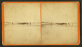 Group of people on the beach in the distance, by D. T. Reed.png