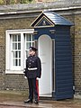 Guardsman at Clarence House - geograph.org.uk - 783922.jpg