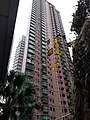 HK 中環 Central 些利街 Shelley Street Mid-levels escalators February 2020 SS2 24.jpg