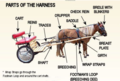 Harness and Cart Label.png