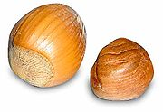 Hazelnuts, with shell (left), without shell (right)