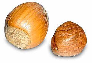 List Of Nut Free Foods Uk