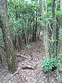 Hashirano, Iwakuni, Yamaguchi Prefecture 741-0073, Japan - panoramio (1).jpg
