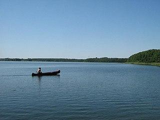Müritz National Park National park in Mecklenburg-Vorpommern, Germany