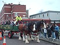 Heavy Horse Team - geograph.org.uk - 726552.jpg