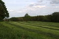 Herbstein Lanzenhain Pasture Haymaking.png