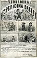 Hesperidina pamphlet 1866.jpg