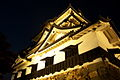 Hikone Castle light up (2118445148).jpg