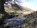 Hoccombe Water, Exmoor - geograph.org.uk - 392582.jpg