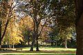 Hoechster Stadtpark 04.jpg