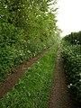 Hortmead Lane - geograph.org.uk - 1308458.jpg