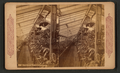 Hot house scene in California, from Robert N. Dennis collection of stereoscopic views 4.png