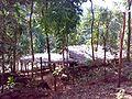 Hotel near Sathodi Falls.jpg
