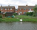 Houses along the Grand Union Canal - geograph.org.uk - 814809.jpg