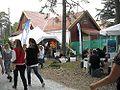 Hovefestivalen 2010-13.jpg