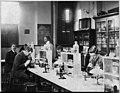 Howard Univ., Washington, D.C., ca. 1900 - class in bacteriology laboratory LCCN2001705795.jpg