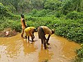 Illegal Gold mining Nigeria1.jpg